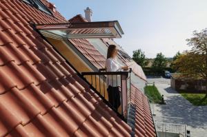 fenêtre de toit balcon mulhouse installateur velux expert conseil